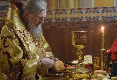 Архієрейське богослужіння у Неділю 24-ту після П'ятидесятниці
